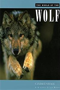 The World of the Wolf