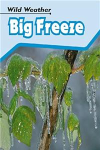 Big Freeze (Wild Weather) (Wild Weather)